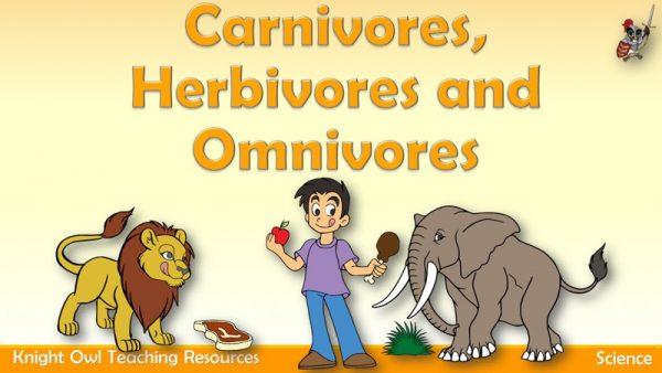 Carnivores, Herbivores and Omnivores1