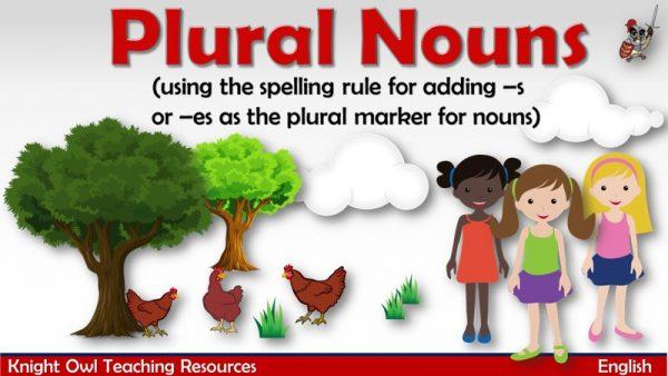 Plural Nouns1