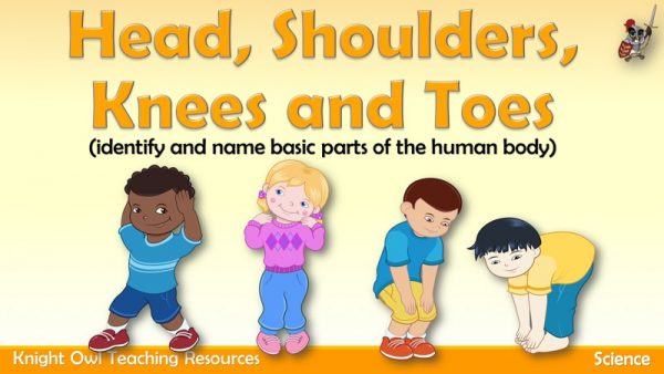 1Head, Shoulders Knees and Toes - song for basic body parts