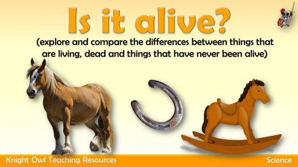 Is it alive 1
