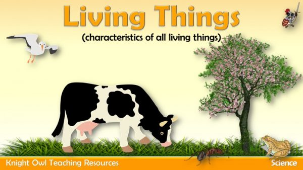 Living Things 1