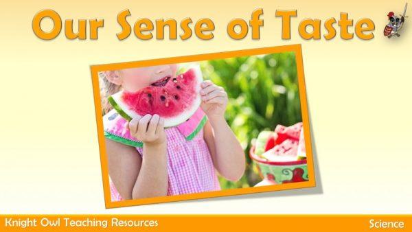 Our Sense of Taste 1