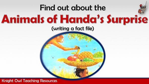Animals of Handa's Surpriseb1