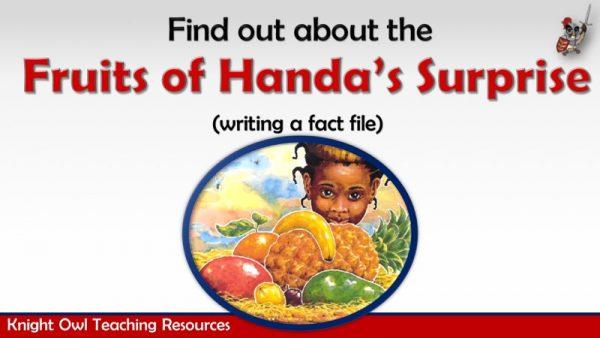 Fruits of Handa's Surprise 1