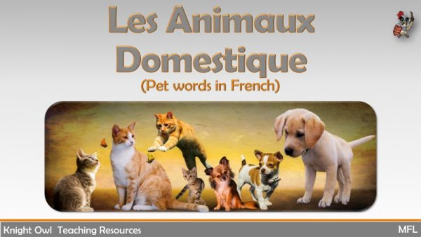 Pet Words in French 1
