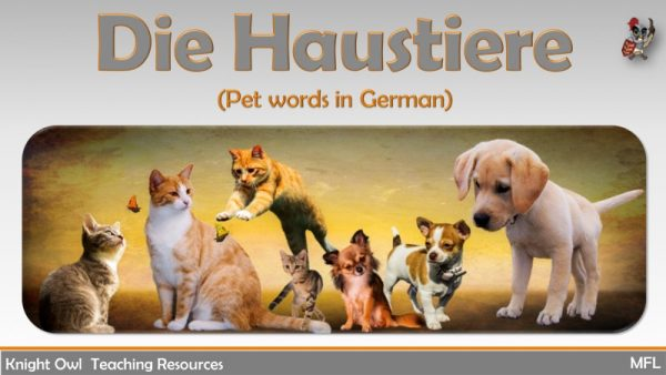Pet Words in German 1